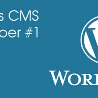 WordPress CMS is still number one
